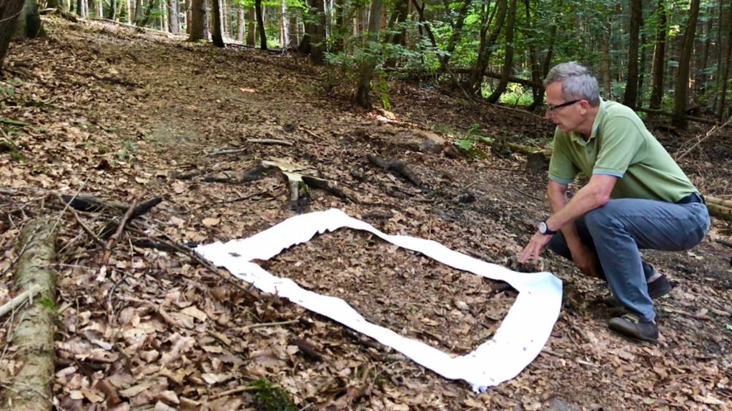 Kunstprojekt wERDschätzung in Schondorf am Ammersee