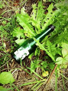 Flasche im Gras