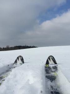 Skilanglauf am Ammersee Höhenweg