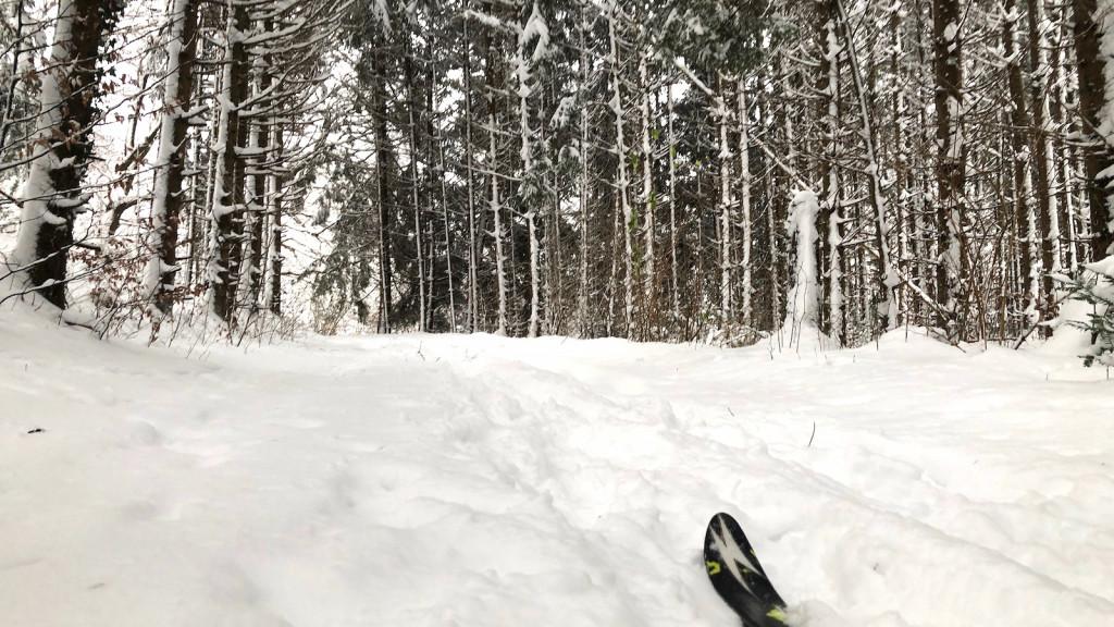 Ammersee Wintersport im Wald bei Schondorf