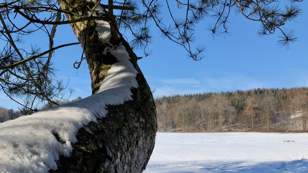 Winter in Schondorf am Ammersee