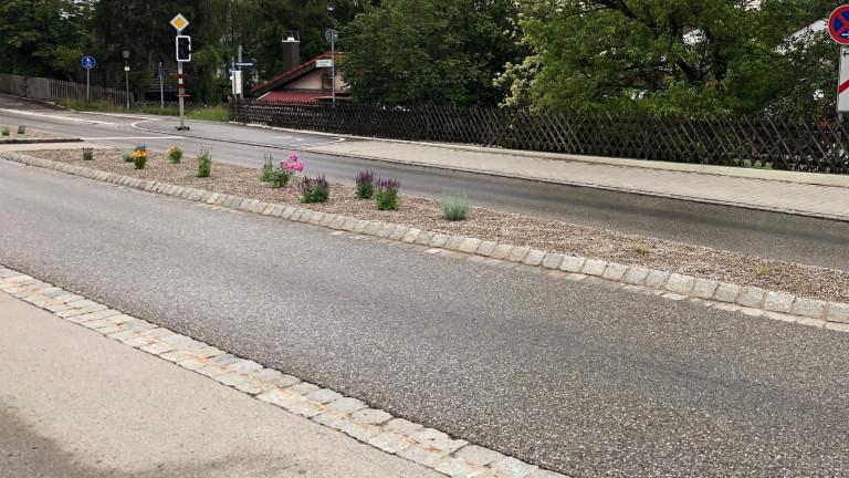 Verkehrsinsel Greifenbergerstrasse