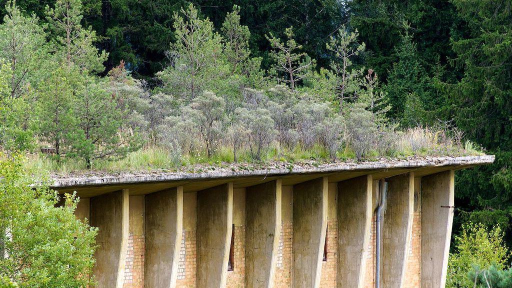 Begrünte Dächer als Tarnung der Nitrocellulose-Fabrik