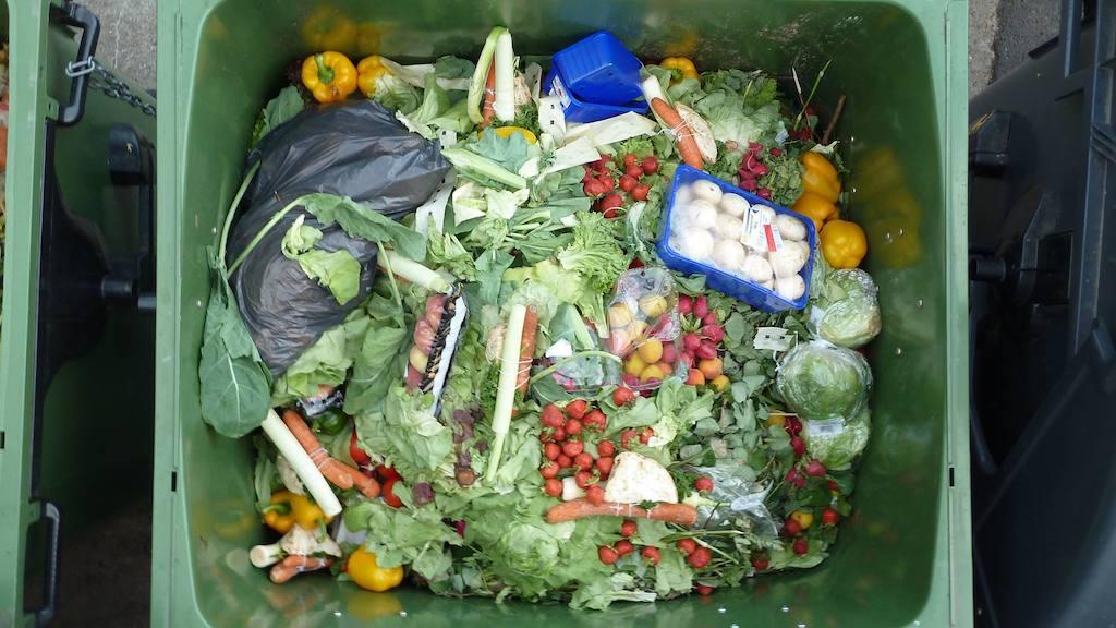 Foodsharing Fairteiler rettet Lebensmittel vor der Mülltonne