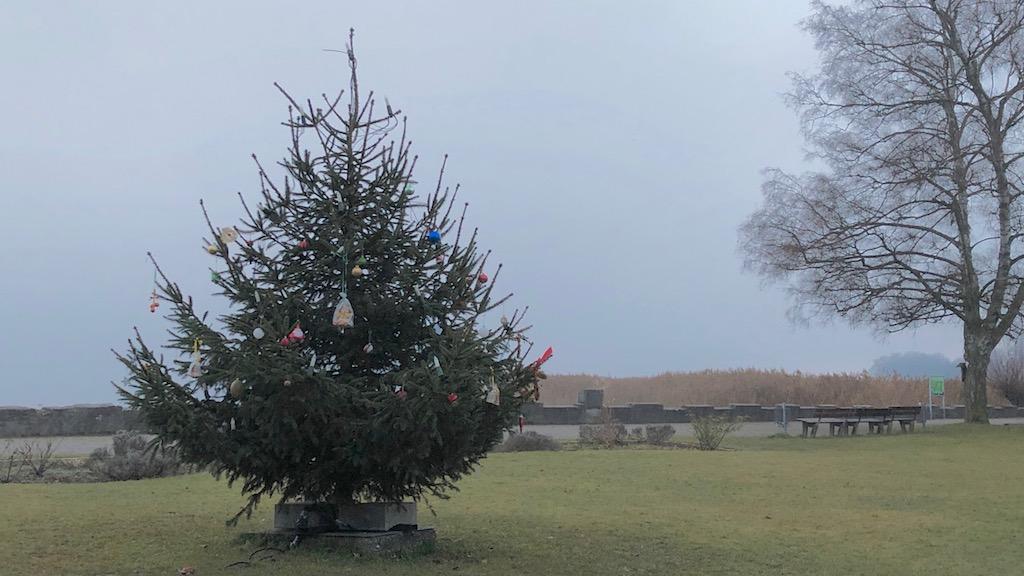 Weihnachtsbaum Seeanlage Ammersee
